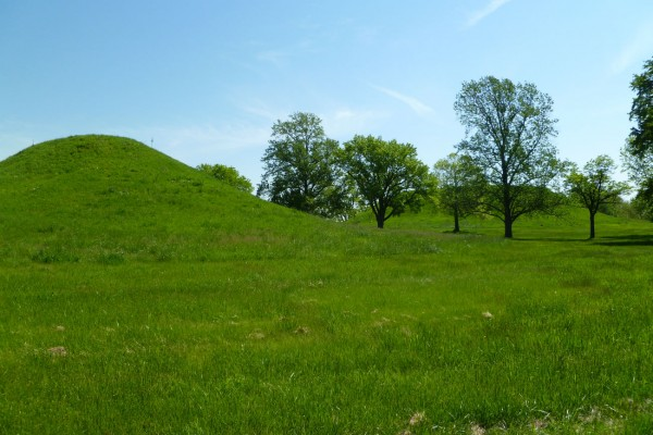 A couple of the twin mounds south of the main Monk's Mound.