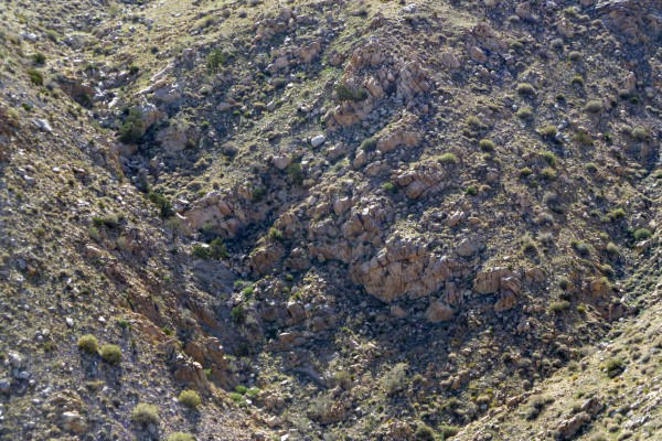 A telephoto image of the furthest area of interest. My binoculars gave me an even closer view than this.