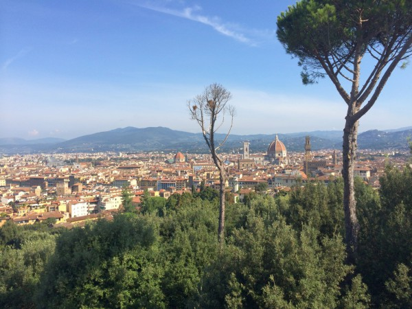 The view of Florence from atop the walls of Forte di Belvedere.