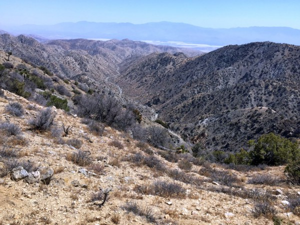 View of the deep canyon that empties from Upper Covington towards Sky Valley.  A plausible exit route for Bill -- if there was a safe way to get to it.