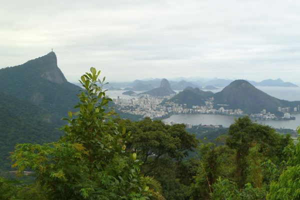 And overview from a jungle view of portions of Rio. The Jiant Jesus on the left (where we didn't go) and Sugarloaf in the distant center.