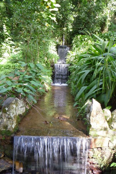 One of the waterfalls in the jungle area of the botanic gardens.