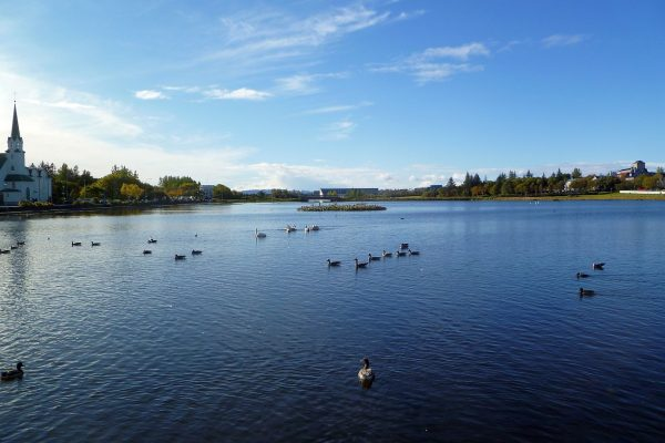 The Tjörnin pond in central Reykjavik.